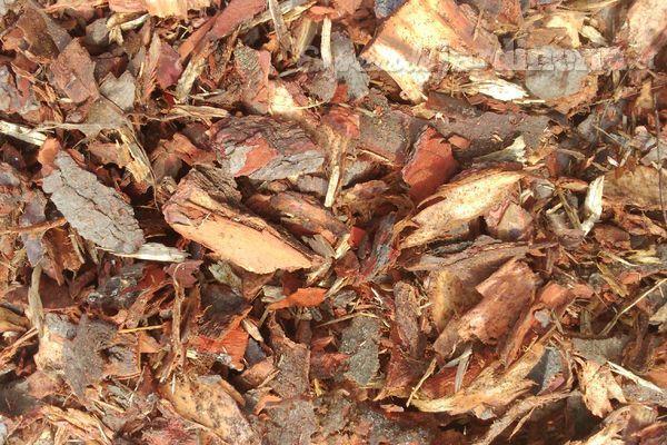 Mulch, la revolución de color y ahorro que Agreste lleva a tu jardín