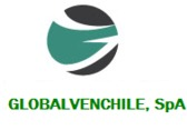 GLOBAL VENCHILE, SPA