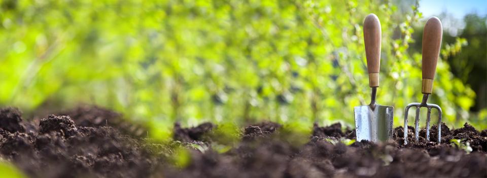 Jardineria for Viveros en curico